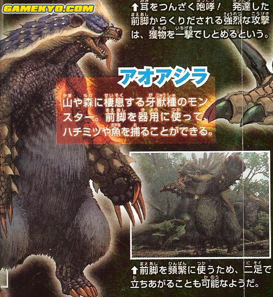 Monster_Hunter_portable_3_4